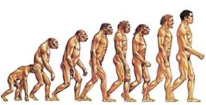 Fine dell'evoluzione per l'uomo.