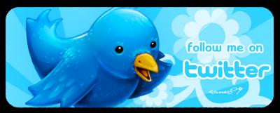 Dopo Facebook, Twitter pronto a sbarcare in borsa nel 2014?