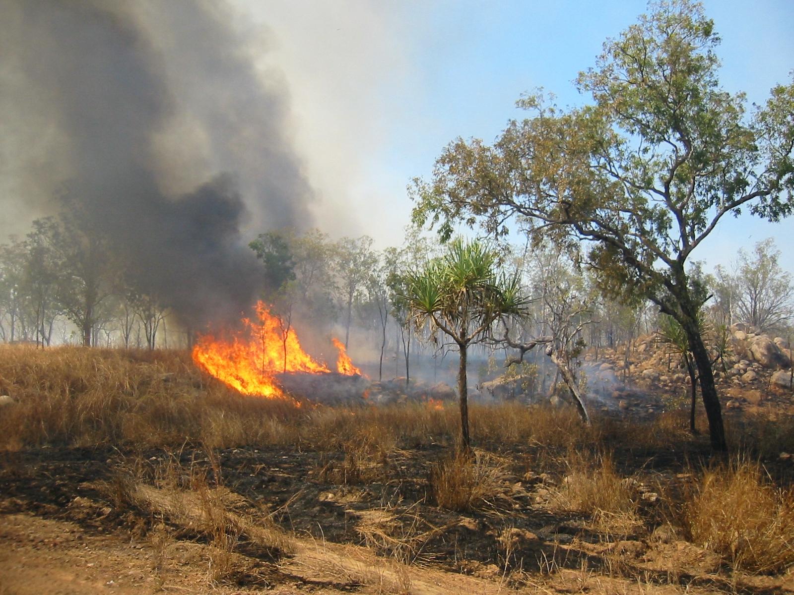 L'Australia nella morsa delle fiamme.