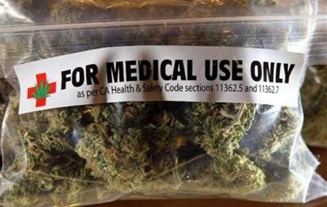 Cannabis terapeutica. E' legge in Emilia-Romagna e verrà prodotta in Puglia.