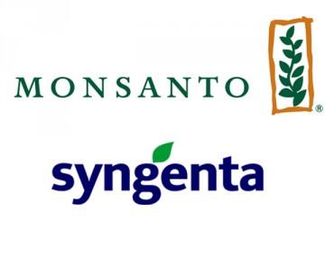 Salta il matrimonio tra Sygenta e Monsanto