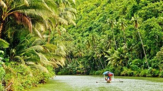 Amazzonia. Il Brasile dice ok alle trivellazioni delle multinazionali